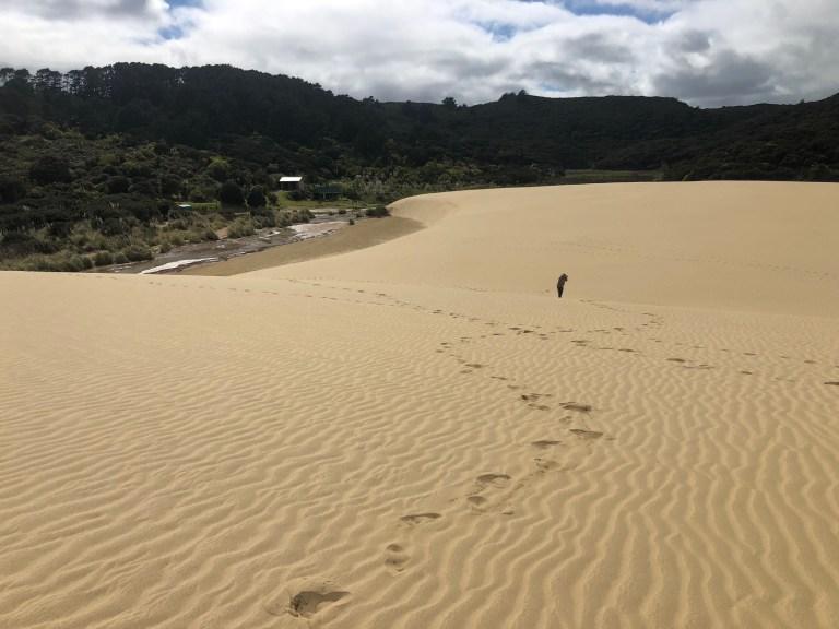 Giant Te Paki Sand Dunes Far North New Zealand October 2020