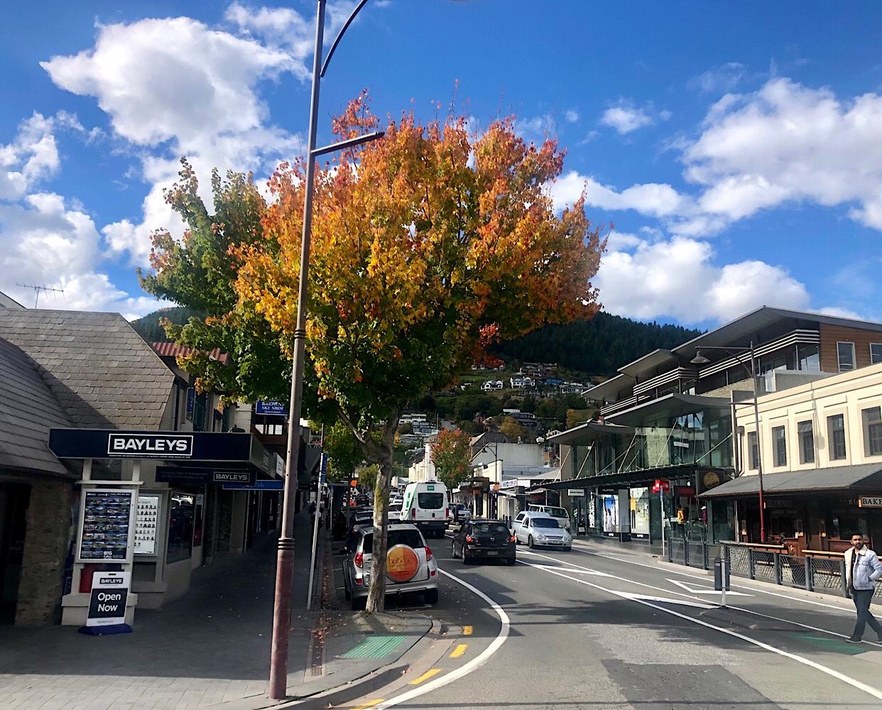 Autumn colours in Queenstown April 2021